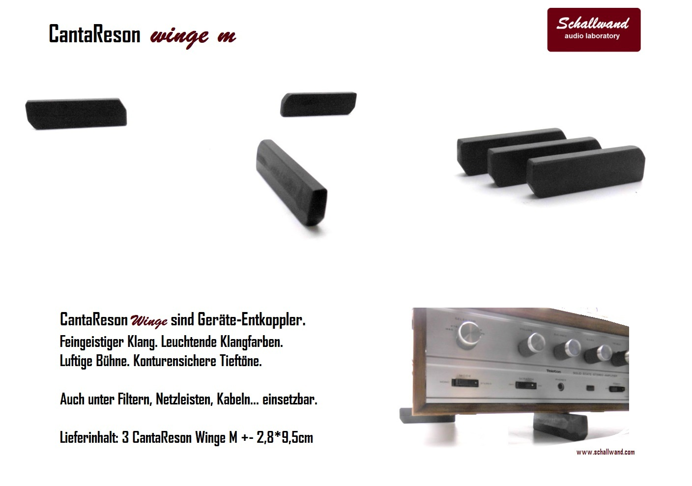 CantaReson_Winge_M_Flyer